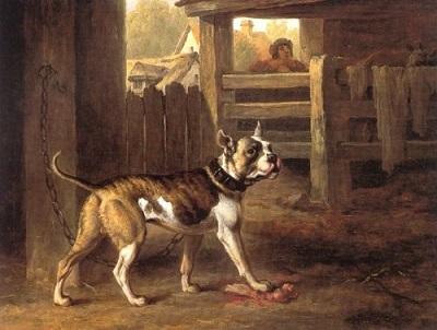 1803 bulldog by philip reinagle